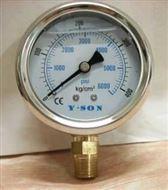 耐震不銹鋼充油表壓力表