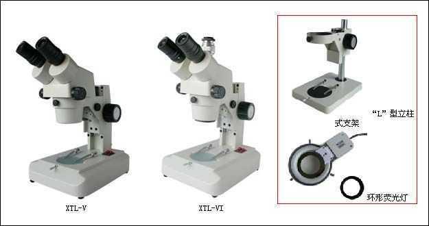 XTL-V  体视显微镜