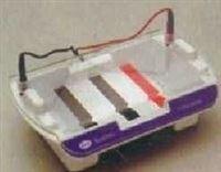 核酸电泳仪