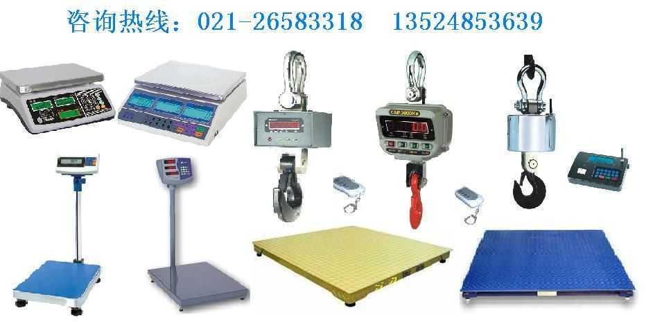 OCSXZ系列直视式电子吊秤OCS-SZ系列无线遥传式电子吊秤OCS电子吊秤