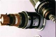 铠装变频电缆