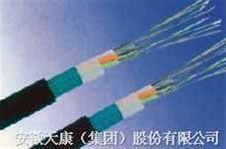 GYTY53光缆