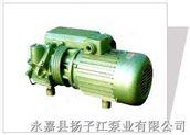 揚子江XD系列單級旋片式真空泵