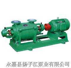 扬子江2SK系列不锈钢两级水环真空泵