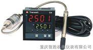 Transmit G-2501系列智能化数显调节仪