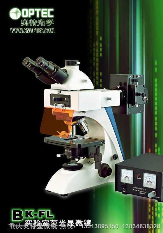荧光显微镜(四激发)