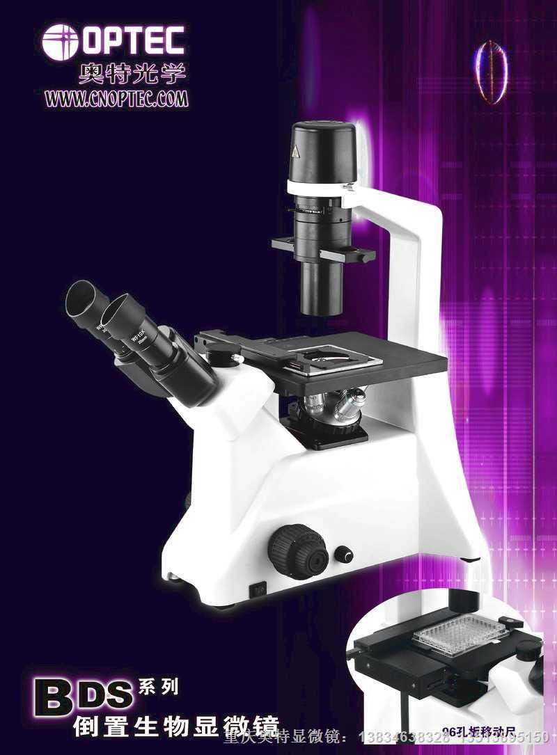 带96孔板移动尺(BDS倒置生物显微镜专用)