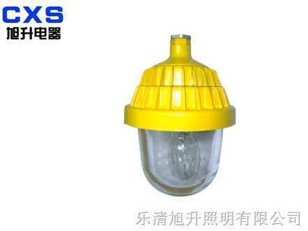 CBPC8720防爆平台灯