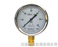 YN系列耐震压力表