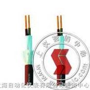 FKFFRP-防火電纜儀-上海自動化儀表