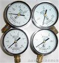 氫氣壓力表Y60