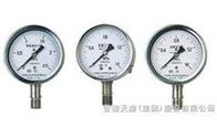 YTS-100耐酸系列压力表