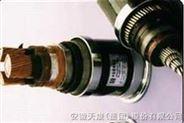 乙丙絕緣氯丁護套船用電力電纜
