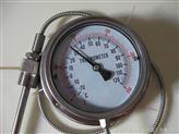 100MM径向带软管全不锈钢温度表