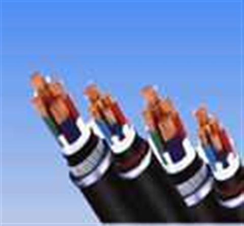 (3+1)芯交联聚乙烯绝缘聚氯乙烯护套电力电缆