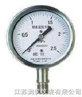 JSRY-YTF -耐腐耐高温压力表