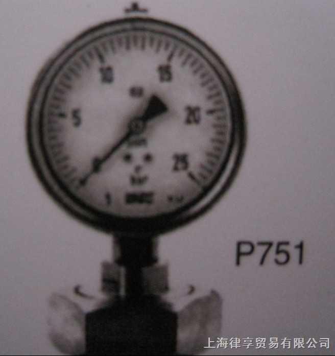 韩国wise-P751-系列-卫生型压力表(螺母型)