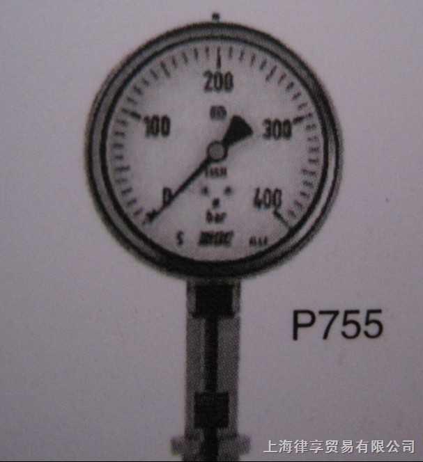 韩国wise-P755-卫生型压力表(矩形法兰型)