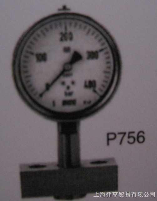 韩国wise-P756-卫生型压力表(均质法兰型)