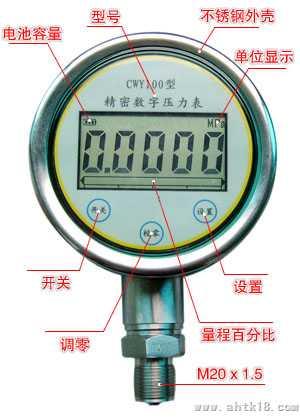 CWY-100数字显示压力表