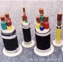 氟塑料绝缘钢带铠装控制电缆