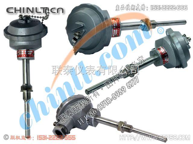 WZP2-280 双支铂热电阻