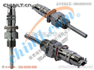 WZP2-270 双支铂热电阻