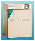 DNP-9022北京电热恒温培养箱