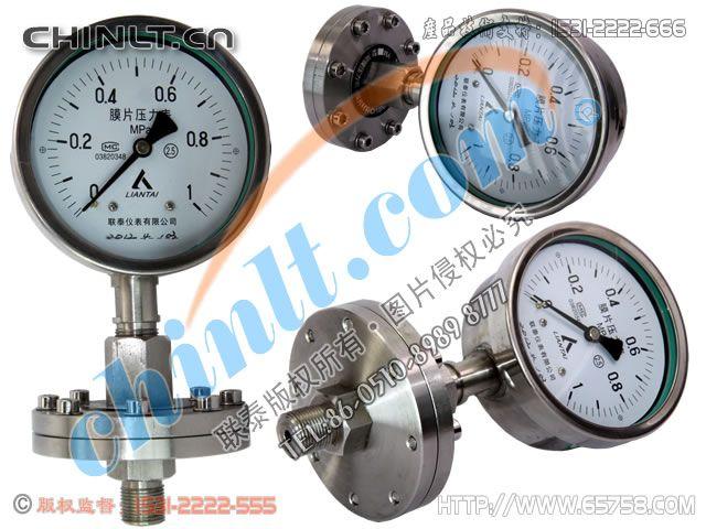 YML-100B-F 不锈钢隔膜压力表