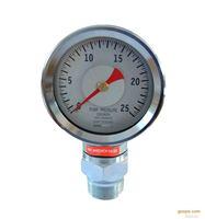 耐震,抗震压力表