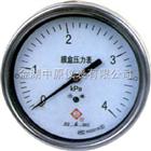ZYY-YE-100、150膜盒压力表