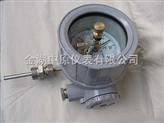 ZYY-WSSX防爆电接点双金属温度计