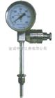 ZYY-WSSE带热电偶双金属温度计