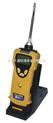 PGM-1600泵吸式一氧化碳檢測儀
