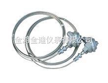 Pt10铠装铂电阻