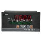 XMJA系列智能流量积算仪