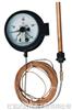 电接点压力式温度计 WTZ/WTQ-288