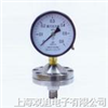 YPF100A膜片压力表,YPF-100A