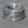 DLY0-250A/M牙嵌式电磁离合器