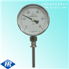 WSS系列 双金属温度计