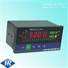 HR-XMDA-9000 多路巡检仪