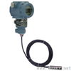 SL1000-485投入式智能液位变送器