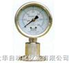 Y-M隔膜压力表