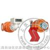 LSZD-双转子流量计-上海自动化秒速赛车九厂
