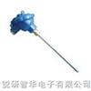RY-DW地温传感器