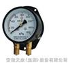 YZS-102双针压力表YZS-102厂家直销
