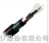 GYTA-4A1b安徽天康多模层绞铝铠装光纤光缆