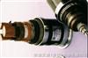 BPGGP变频电缆