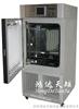 YP-500GSP北京药品综合稳定性试验箱