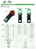 DY1000/DY1100数字式钳型接地电阻测试仪